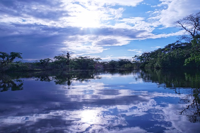 jezero v Amazonii